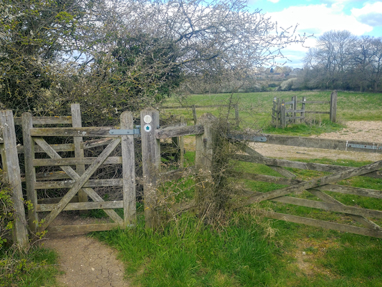Two of the many gates along Sandon footpath 3 between Roe Green and Sandon
