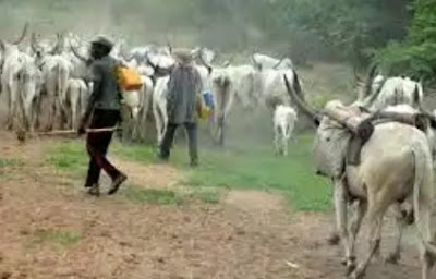 Fulani Herdsmen Demand Four Percent Of Bauchi Land To End Clashes