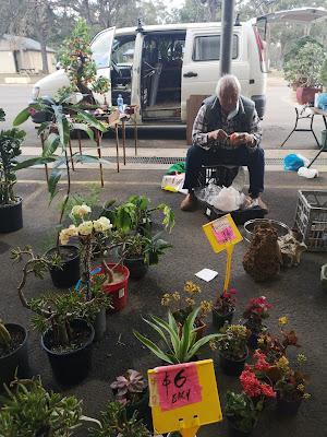 Plant seller. Photography by Rachel Hancock @retrogoddesses
