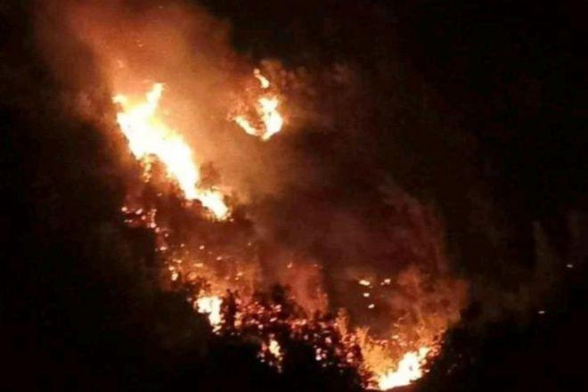 Kebakaran Hutan Terjadi di Bone, Sudah 8 Jam Belum Padam