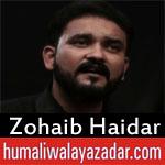 https://www.humaliwalayazadar.com/2018/06/zohaib-haidar-ramzan-noha-2018.html