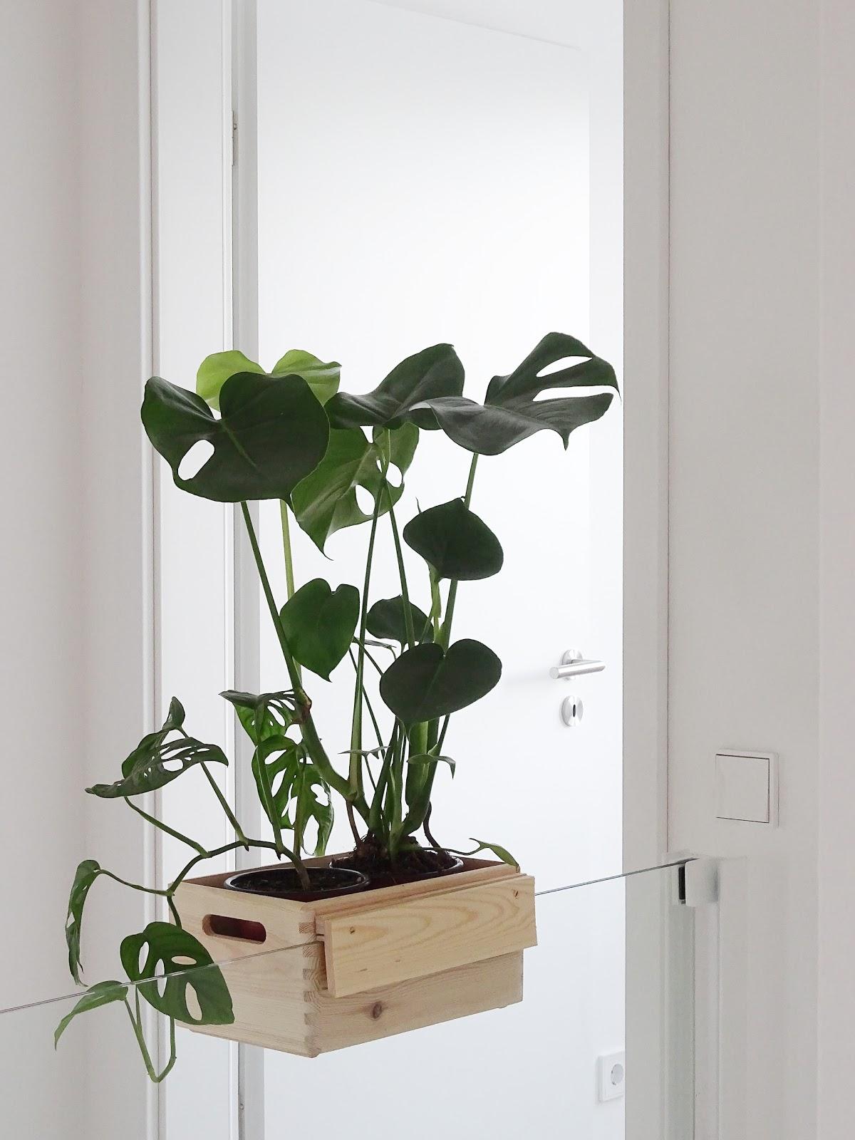 diy blumenkasten aus holz zum aufh ngen an treppengel ndern und galerien ein gel nder als. Black Bedroom Furniture Sets. Home Design Ideas