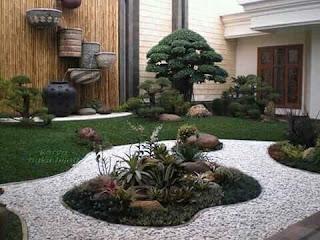 taman kering dengan bonsai dollar