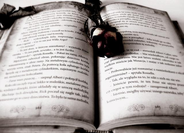 Teks biografi adalah teks yang mana berisi penjabaran seorang tokoh yang dianggap dapat dijadikan teladan. Penjabaran informasi yang dimuat di dalamnya dapat berupa kelebihan, pengalaman, maupun masalah yang dialami.