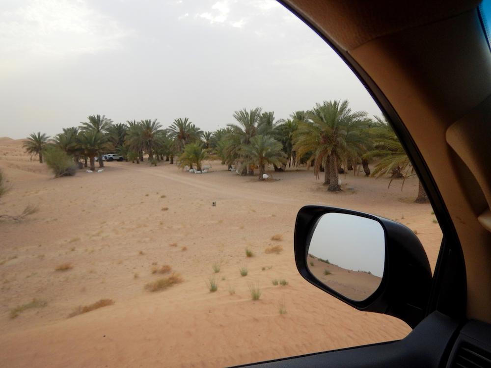 peexo desert adventure dubai