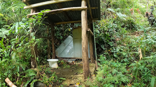 open air toilet bowl in the middle of the forest