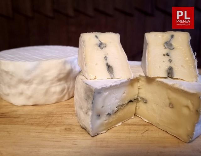Bleu neige queso cremoso de corteza blanca de penicillium y centro azul