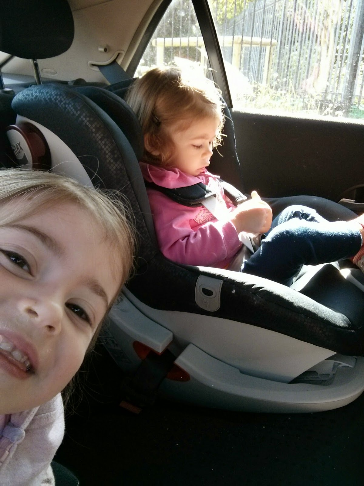 Photo bomb Britax King II LS