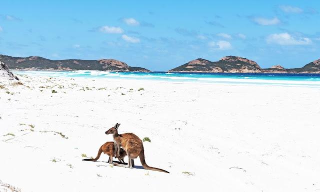Cape le Grand en Western Australia