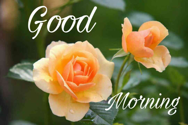 good morning ka photo new