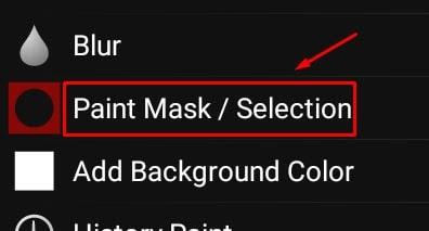 Paint Mask / Sel