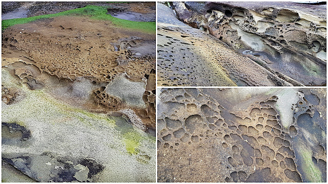 Strange textures in Galiano's shorelines...