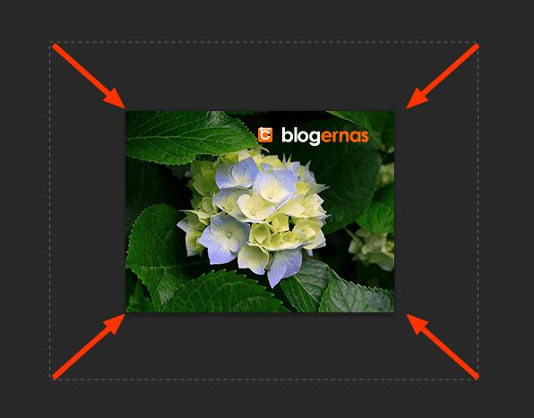 Memperbesar dan Memperkecil Foto dg Adobe Photohsop