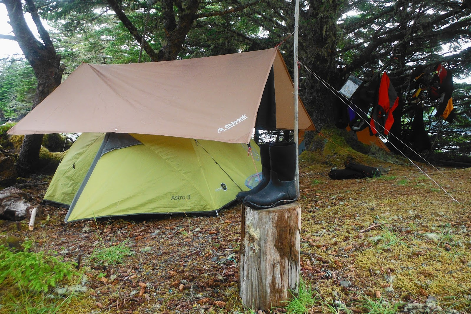 Carabiners come in handy when doing tarpology. Quick and easy to set up. & Gecko Paddler: Godu0027s Pocket - 7 Days plus 1 (Part 3)
