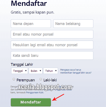 Cara Membuat Facebook - Isi Data
