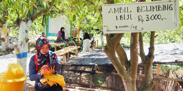 Harga Belimbing Desa Ngringinrejo