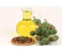 Castor oil is a triglyceride of fatty acids