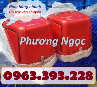 Thùng giao hàng loại nhỏ, thùng chở linh kiện, thùng giao đồ ăn sau xe máy TGHN4
