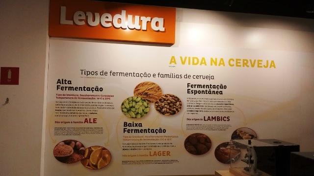 Aprendendo sobre os diferentes tipos de fermentação