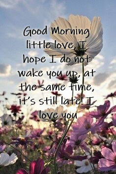 Best Good Morning Love Thoughts & Quotes