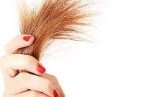 Cara Mengatasi Rambut kering Dan Bercabang