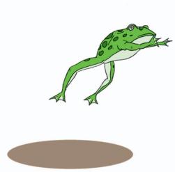 gambar katak melompat www.jokowidodo-marufamin.com