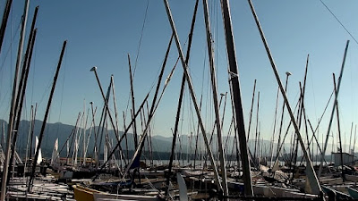 Dozens of spars standing before Vancouver seascape
