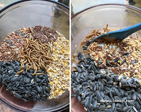 Seeds and fat mixture for suet cakes