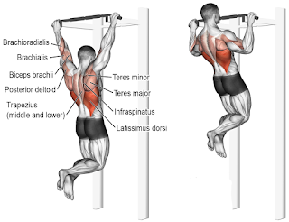 Top 5 Exercises To Build Wide-Grip Pull-Up