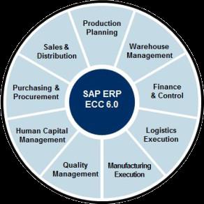 main functional sap erp modules