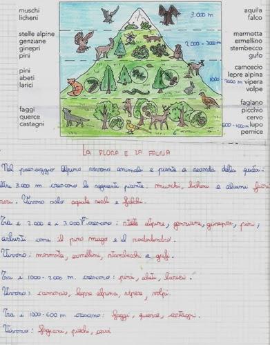lozainetto Geografia  La flora e la fauna delle Alpi