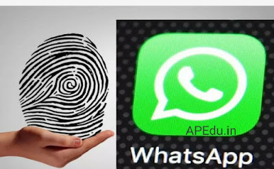 WhatsApp Fingerprint: Change Settings for Fingerprint Lock on Your WhatsApp