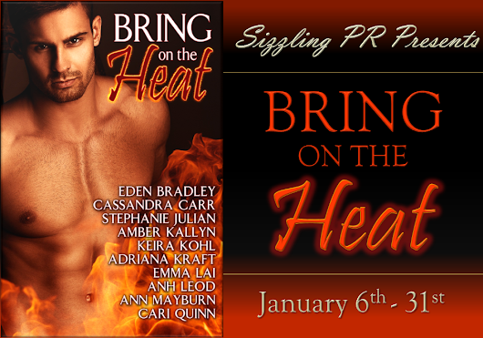 Guest Post - Bring on the Heat Anthology