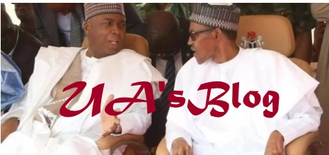 Saraki 'reports' IGP Idris to Buhari