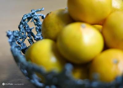 Frutero hecho con soldaditos de plástico reciclados