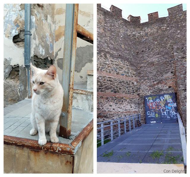 גראפיטי וחתול חמוד בסלוניקי