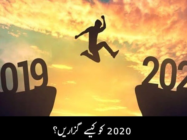 How to spend Year 2020?