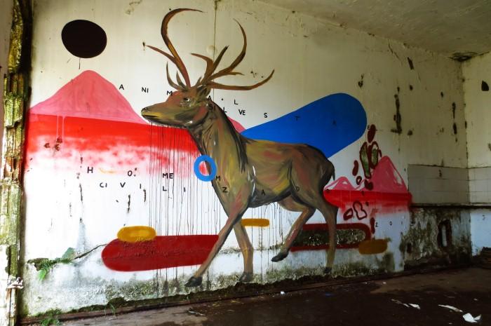 Уличный художник. Zeh Palito 15