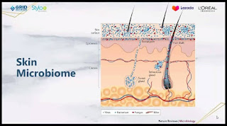 Microbiome adalah