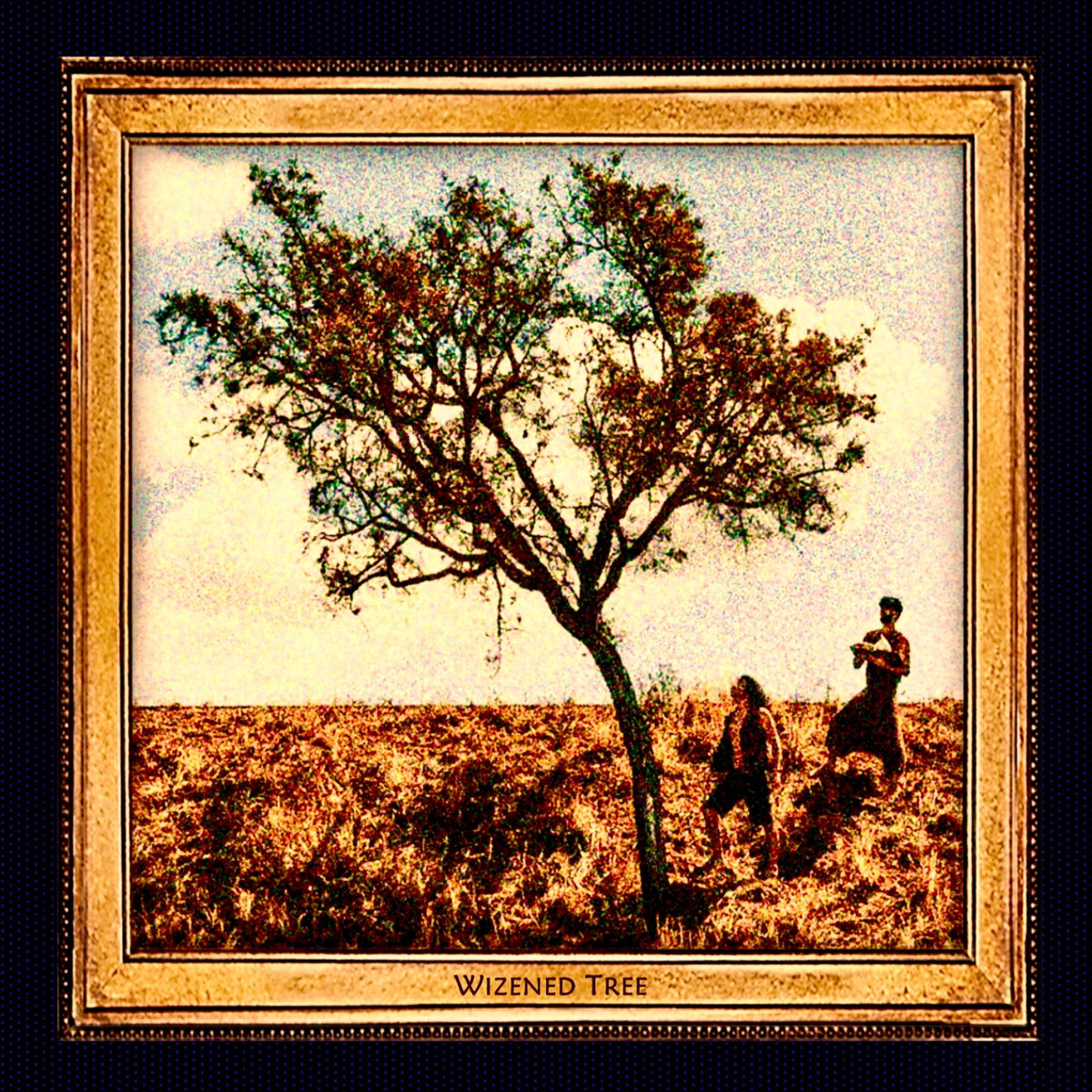 DESERT PSYCHLIST: WIZENED TREE ~ ROCK'N'ROLL FROM TOCANTINS