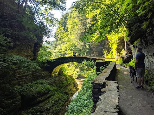 Gorge Trail Robert H. Trehman State Park Bridge