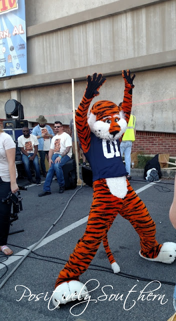 Aubie at Make Music Day