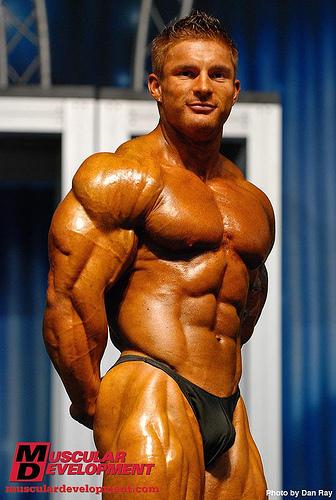 músculo novato