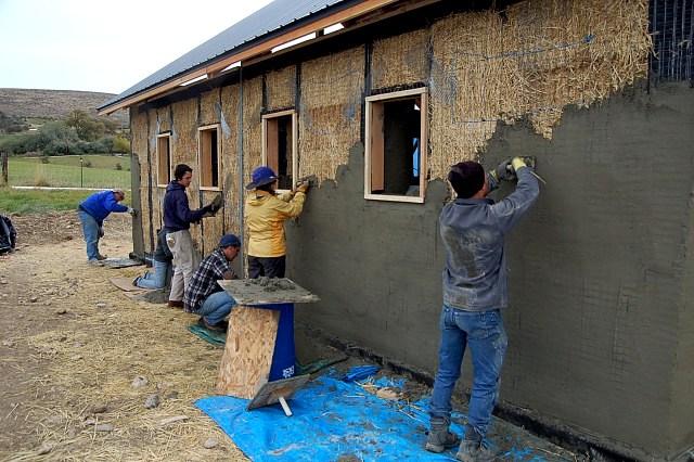 la paja es rica en celulosa dura y lignina de la madera elementos que no son comestibles para los insectos o cualquier otro animal
