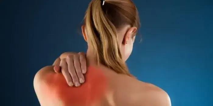 manfaat jahe untuk mengurangi rasa nyeri dan sakit pada otot