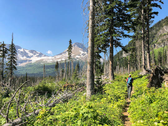 Hiking the Gunsight Pass Trail