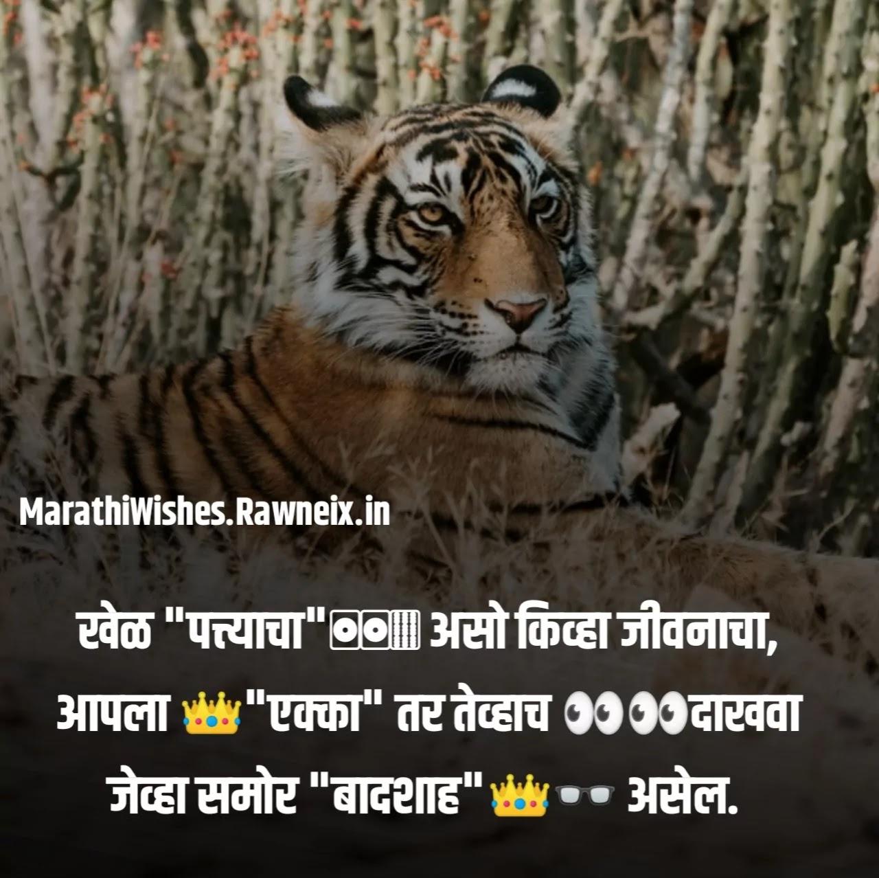 Bhaigiri Status Marathi