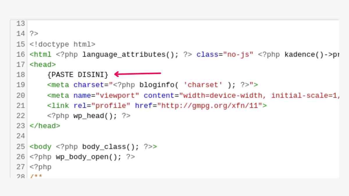 cara memasang facebook pixel di WordPress