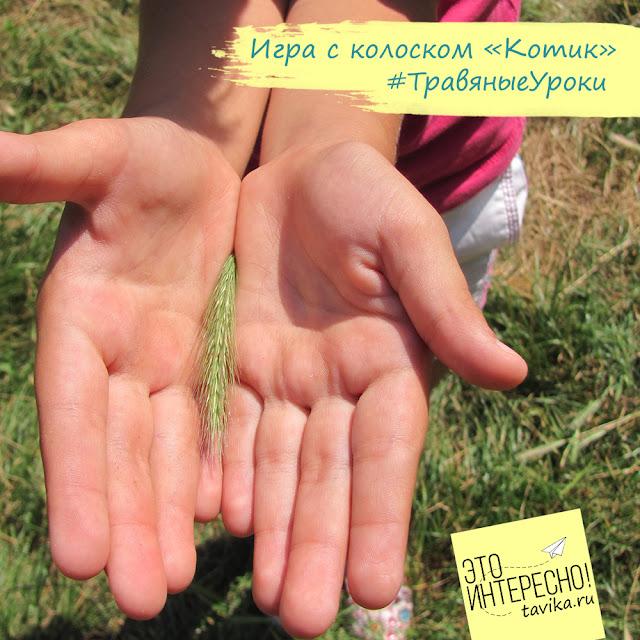 игры с травами для детей