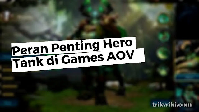 Peran Penting Hero Tank di Games Arena Of Valor